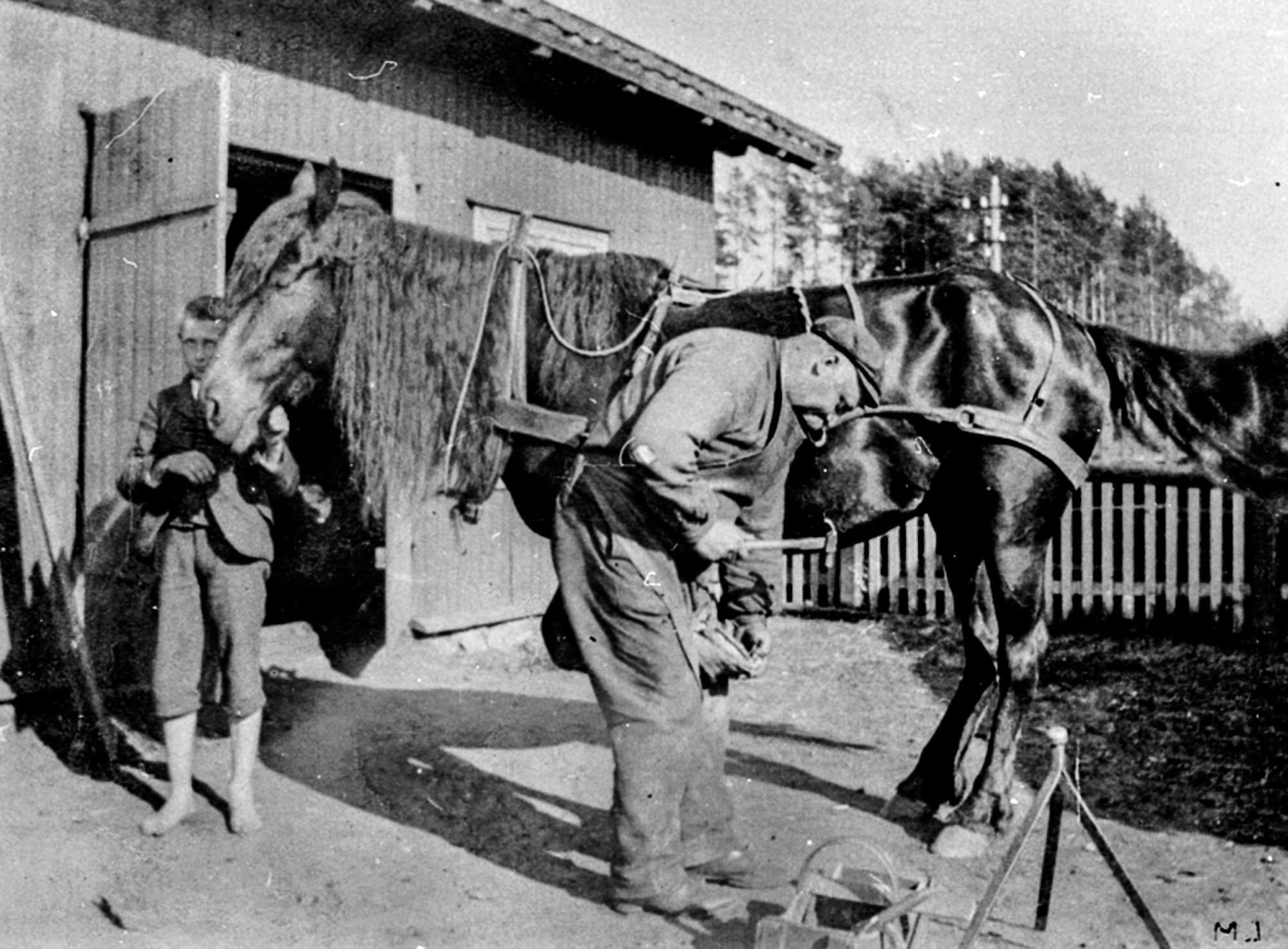 Ole Larsen is shoeing a Norwegian Dole horse. A barefoot Martinius Larsen is holding the horse. The location is Brumunddal, Ringsaker, Hedmark. | Photo by Unknown - digitaltmuseum.no 0412-07770 - Public domain.