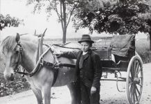 A Norwegian Fjord horse harnessed to a wagon - and a young and dapper coachman. | Photo by Anders Beer Wilse - digitaltmuseum.no DEX_W_00611 - CC BY.