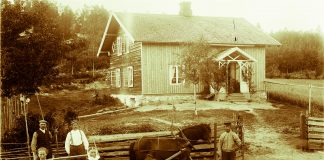 Haymaking in Ringsaker, Hedmark.   Photo by Kristoffer Horne - digitaltmuseum.no HHB-07850 - Public domain.
