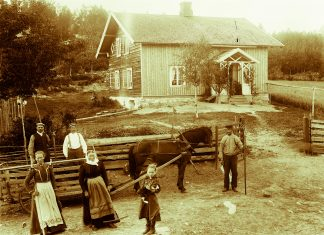 Haymaking in Ringsaker, Hedmark. | Photo by Kristoffer Horne - digitaltmuseum.no HHB-07850 - Public domain.