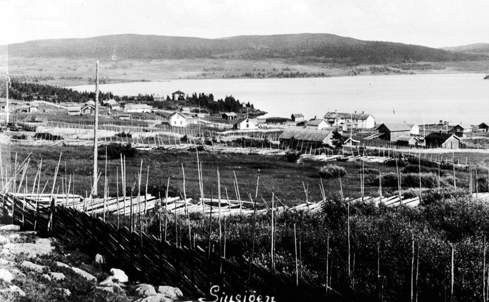 Fencing - the old Norwegian way. To keep the domestic animals in - and the carnivores out? The Norwegian word is «skigard». The location is Sjusjøen, Ringsaker, Hedmark, Norway. | Photo: Unknown Domkirkeodden - digitaltmuseum.no 0412-11695 - public domain.