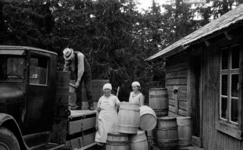 Unloading wooden barrels. It is great to see the craftsmanship of the barrel maker - the cooper. The location is Stange, Hedmark, Norway. | Photo: Adolf Skjegstad - digitaltmuseum.no ASK-01748 - public domain.