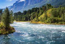 Norwegian landscape - mountains, water, and a lush green forest. Loelva, Loen, Stryn, Sogn og Fjordane, Norway. | Photo: Sergey Bogomyako - adobe stock - copyright.