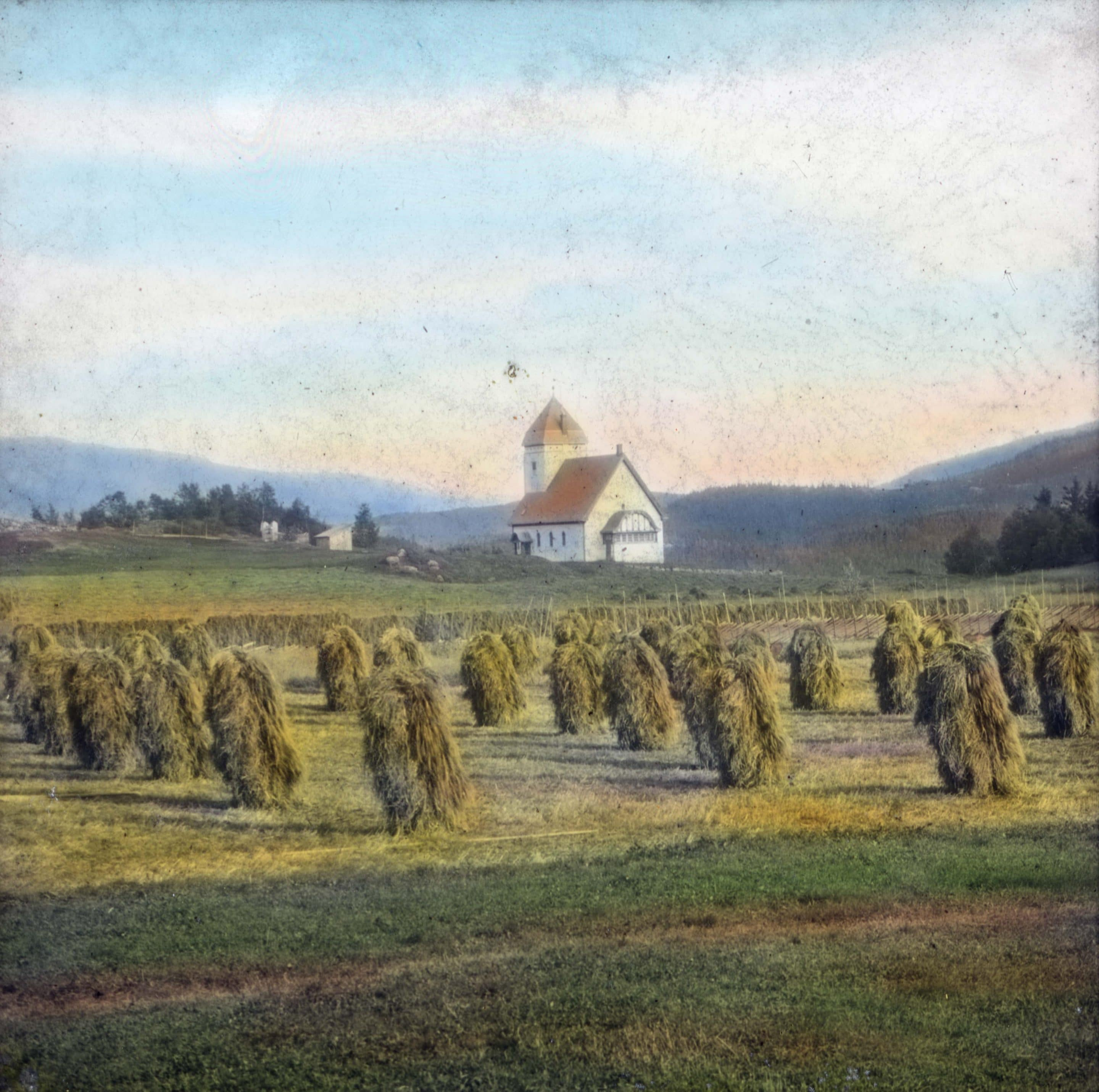 The Lomen church in Vestre Slidre, Valdres, Oppland, Norway. In the foreground, haymaking - hanging the grass on wooden poles to dry. | Photo: Anders Beer Wilse - digitaltmuseum.no DEX_W_00531 - CC BY.