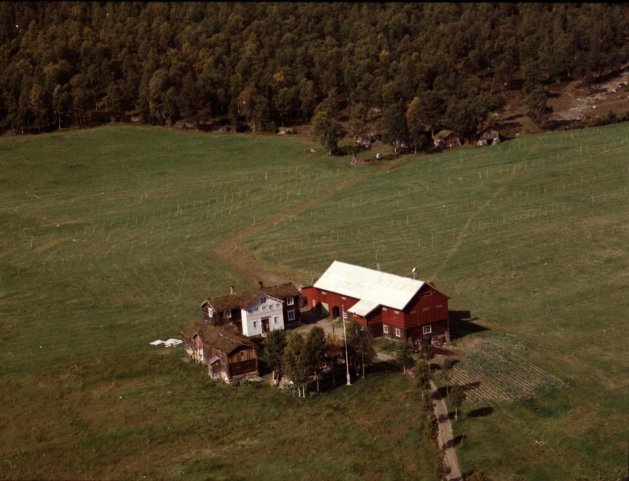Nyås farm, Os, Hedmark in 1961. | Photo: Widerøes Flyveselskap AS - digitaltmuseum.no MINØ.014133 - Public domain.