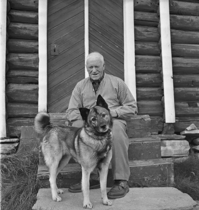 John Blæsterdalen and his Norwegian Elkhound in front of the storehouse - stabburet. The location is Folldal, Hedmark, Norge - and the year is 1968.   Photo: Per Magne Grue - digitaltmuseum MINØ.100835 - cc by.