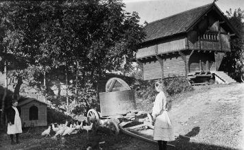 Two Norwegian girls are feeding the chickens. The wagon is used for the transportation of water. The building in the background is a stabbur - a typical Norwegian storehouse for food - lifted from the ground. The location is Løkenes farm, Asker, Akershus, Norway - and the year is 1890. | Photo: Marie Rustad - digitaltmuseum.no OB.Z05481 - cc by-sa.