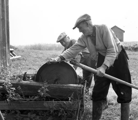 Otto Horndal sharpens his scythe on the old grindstone. The name of the man pulling the crank handle is not known. The location is Horndalen, Elverum, Hedmark, Norway - and the year is 1958. If you ever visit a Norwegian farm, ask to be shown where the grindstone is. A surprisingly large number of farms still have the grindstone tucked away somewhere - or even displayed in a prominent place. For many, it is a symbol of the old farming way of life - evoking childhood memories and emotions. | Photo: Dagfinn Grønoset Glomdalsmuseet - digitaltmuseum.no DGS.2971 - cc by-sa.
