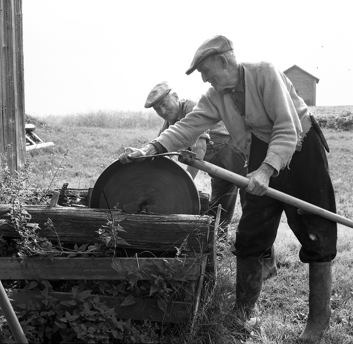 Otto Horndal sharpens his scythe on the old grindstone. The name of the man pulling the crank handle is not known. The location is Horndalen, Elverum, Hedmark, Norway - and the year is 1958. If you ever visit a Norwegian farm, ask to be shown where the grindstone is. A surprisingly large number of farms would still have the grindstone tucked away somewhere. | Photo: Dagfinn Grønoset Glomdalsmuseet - digitaltmuseum.no DGS.2971 - cc by-sa.