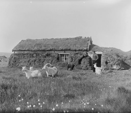 Utilising nature's very own insulation: a man outside his turf covered cottage - with his dog and his goats. Taken in Syltevik, Båtsfjord, Finnmark, Norway - around 1910.   Photo: Johan Oskar Andreas Grasmo - digitaltmuseum.no FBib.82011-008 - Public domain.