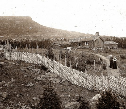 Two ladies visiting a seasonal summer farm in Skeikampen, Gausdal, Oppland, Norway. The fencemaker has done a splendid job. Hopefully, no little lamb will get out - and no wolf get in. | Photo: Robert Collett - digitaltmuseum.no NF.09831-010 - public domain.