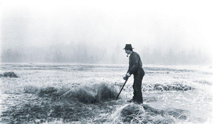 Photo: Haakon Garaasen - Trysil Engerdal museum - digitaltmuseum.no 0428-0000-00532 - public domain.