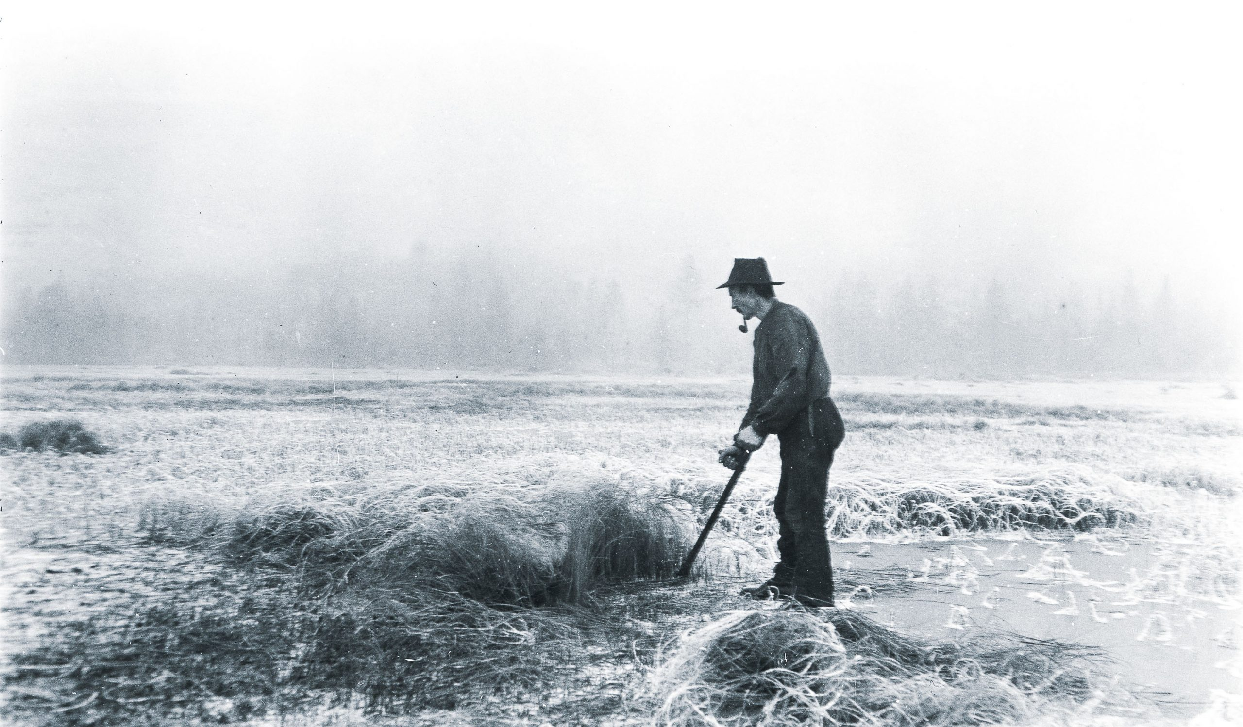 Homestead | cutting marsh grass on the frozen lake | Norway