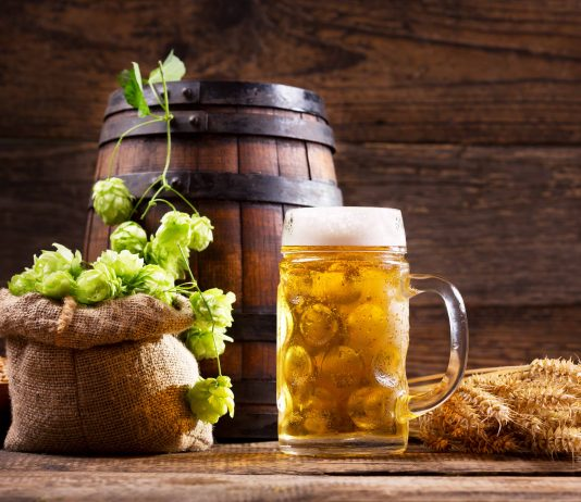 Beer - and ingredients. | Photo: Nitr - adobe stock - copyright.