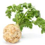 Celeriac - or celery root. | Photo: Dmytro - adobe stock - copyright.