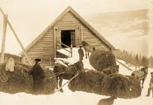 Bringing home the winter hay. | Photo: Unknown domkirkeodden - digitaltmuseum.no 0412-08712 - public domain.