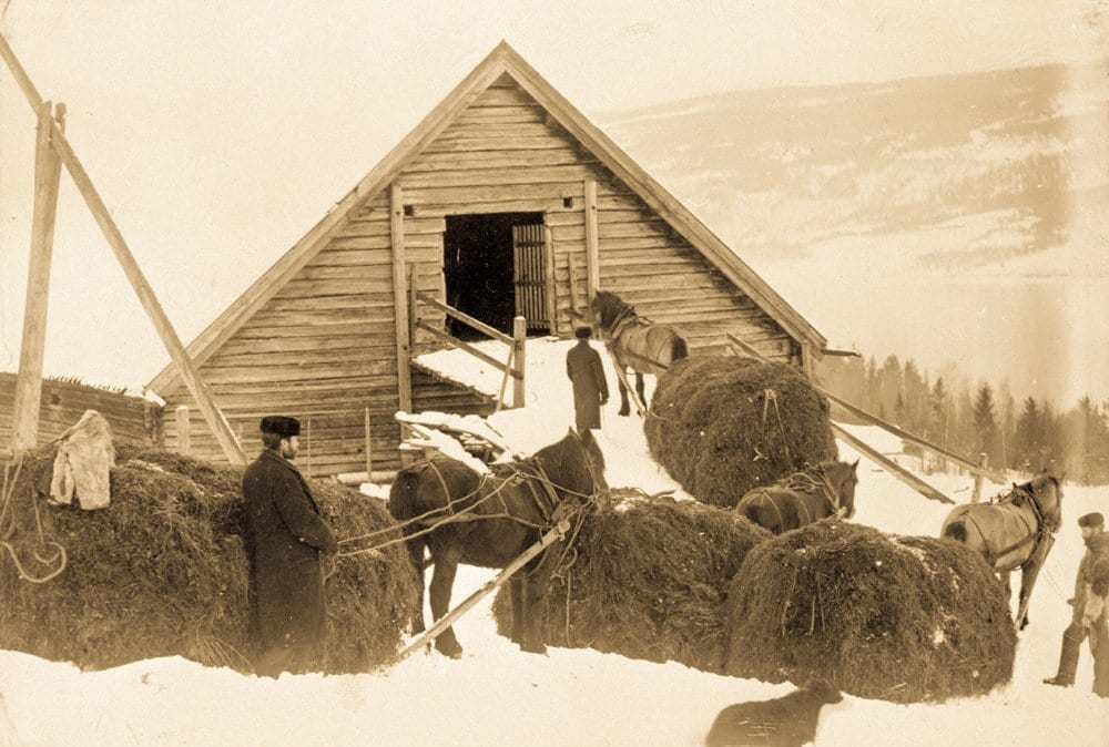 Homestead | bringing home the winter hay | Norway