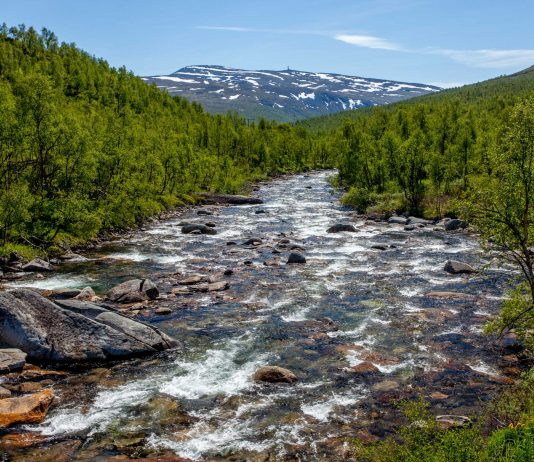 Mountain river - Norway. | Photo: martinhlavacek79 - adobe stock - copyright.