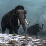 Norway   history timeline   from stone age to modern era