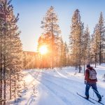 Skiing in a Norwegian forest. | © JR Photography - stock.adobe.com.