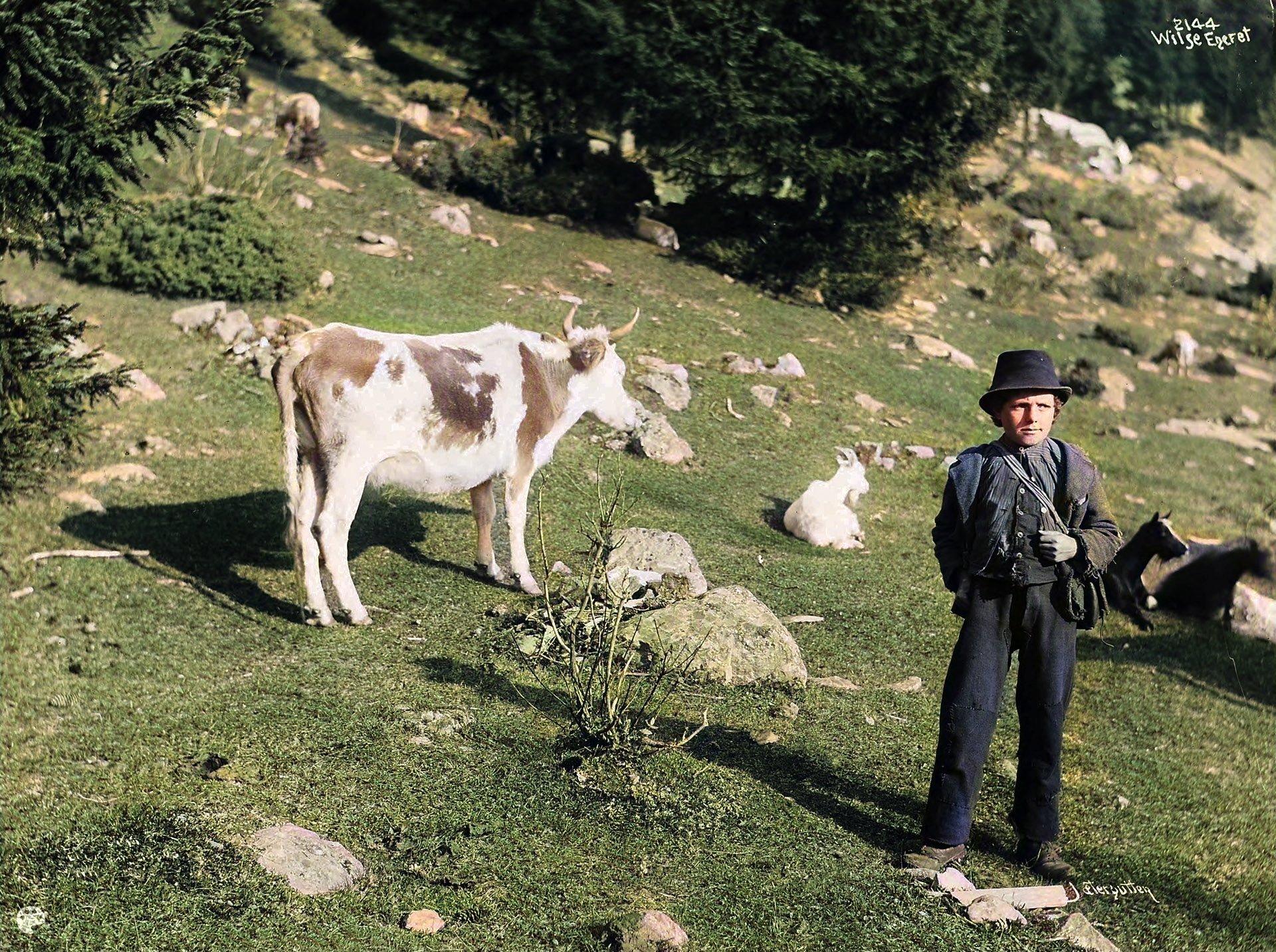 A Norwegian herder-boy in 1903 - possibly Kristen Skogen. | Photo: Anders Beer Wilse - Norsk Folkemuseum cc pdm.